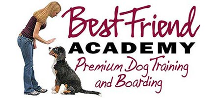 Best Friend Academy Premium Dog Training and Boarding